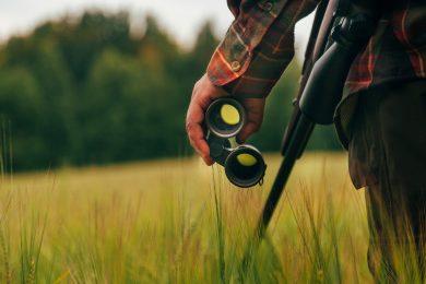 Kabinett beschließt Jagdgesetz