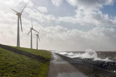 Forscher entwickeln neue Modelle für einen möglichst naturverträglichen Küstenschutz