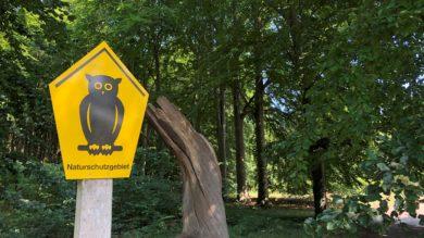 Streit über Leitung der Öko-Stationen gefährdet Erfolg des Artenschutz-Paktes