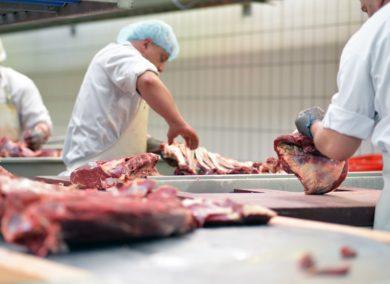 Nach Corona-Fällen in Schlachthöfen: Krisenstab weist höhere Test-Frequenz an
