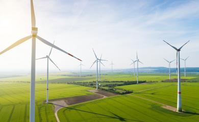 FDP-Chef hadert mit Windkraft-Zielen der Regierung, will aber mehr Erneuerbare Energien